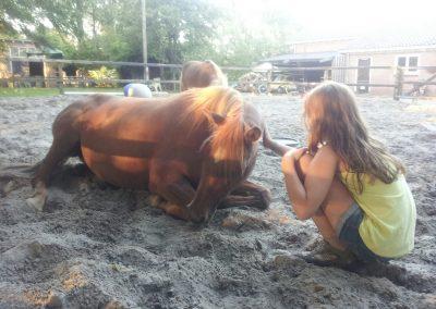 Paardgenieten bij BinnenInn